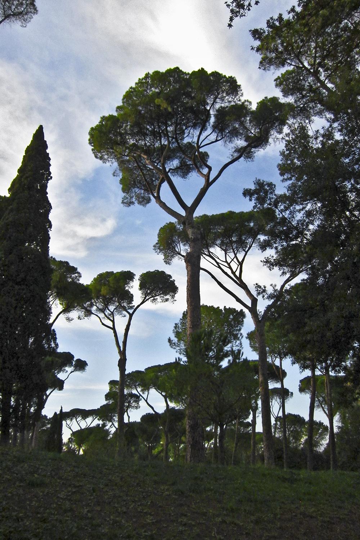 Roma at Borghese